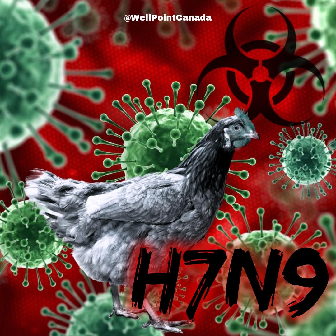 H7N9…DISEASE X